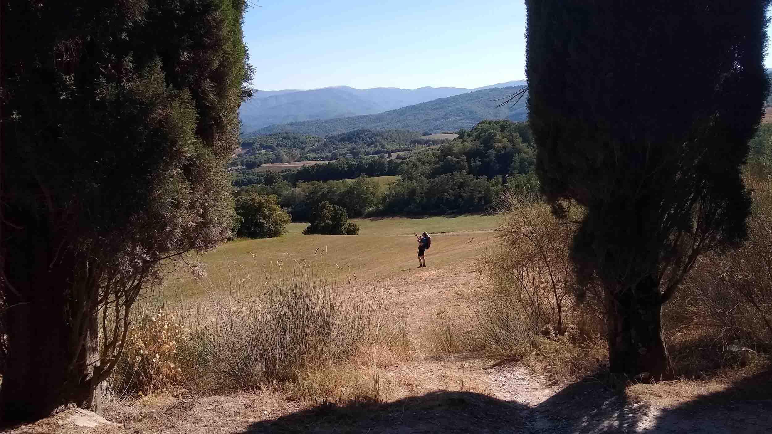 Cammino di Dante Letterevive Berneri
